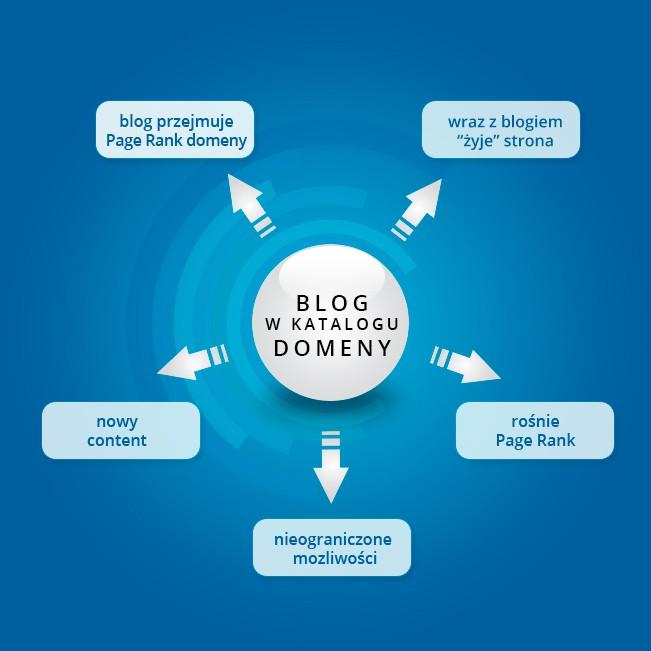 blog a seo