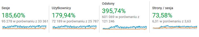 pozycjonowanie dla sklepfryz.pl