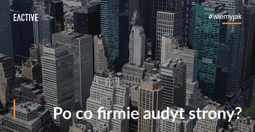 po-co-firmie-audyt-eactive-mini