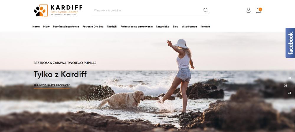 kardiff - screen strony internetowej